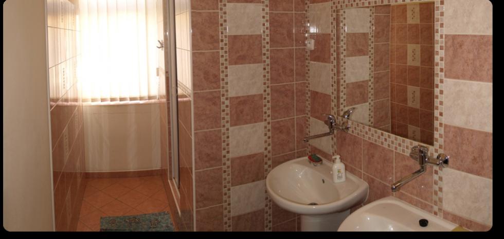 Ubytovna Duchcov u města Teplice - koupelna